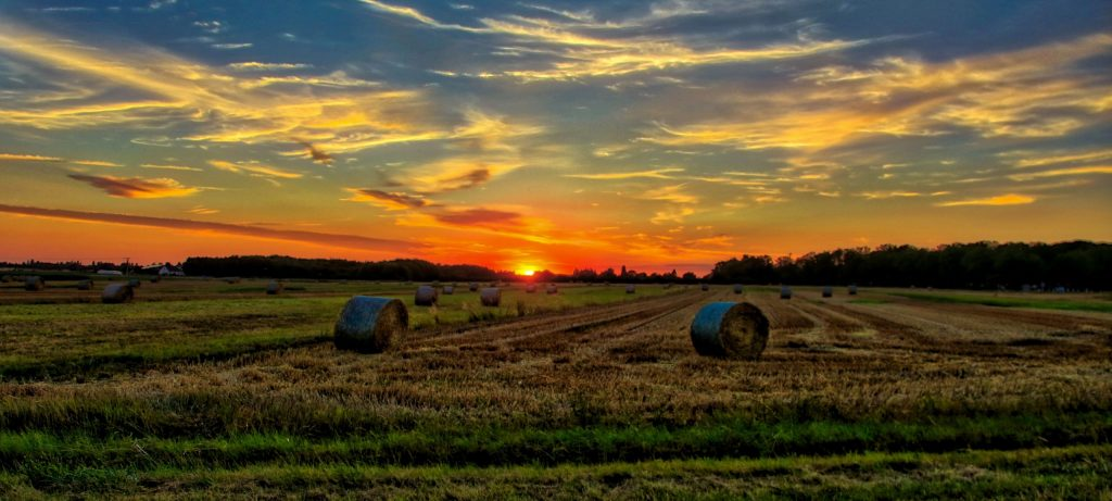 sunset-over-the-horizon-on-the-farmland